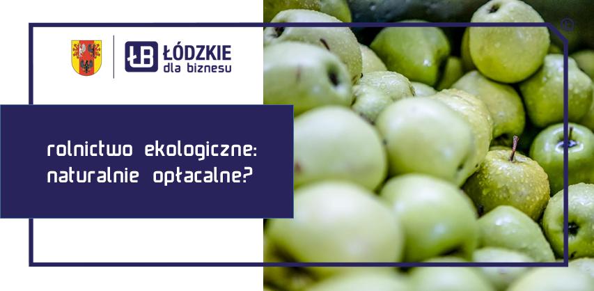 Rolnictwo ekologiczne: naturalnie opłacalne? Dialog Obywatelski Przedstawicielstwa Komisji Europejskiej w Polsce